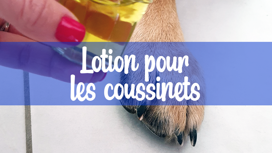 lotion-coussinets-hydratante